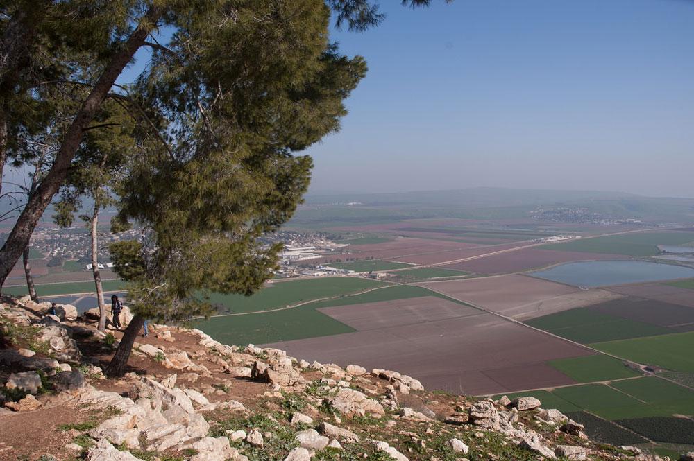 PI_GOLBE_ISRAEL_CO_004