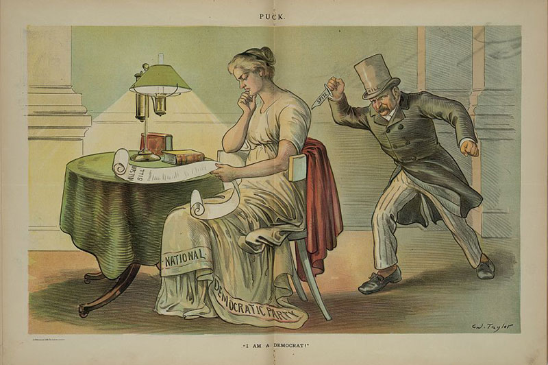 "From Puck magazine, April 25, 1894. Print shows David B. ""Hill"" holding a knife labeled ""Spite"" and sneaking up behind a woman labeled ""National Democratic Party"" who is sitting at a table, reading a paper labeled ""Wilson Bill""."