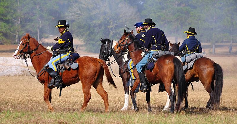 id_engelhard_horses_ap_001