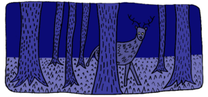 deer in dark forest